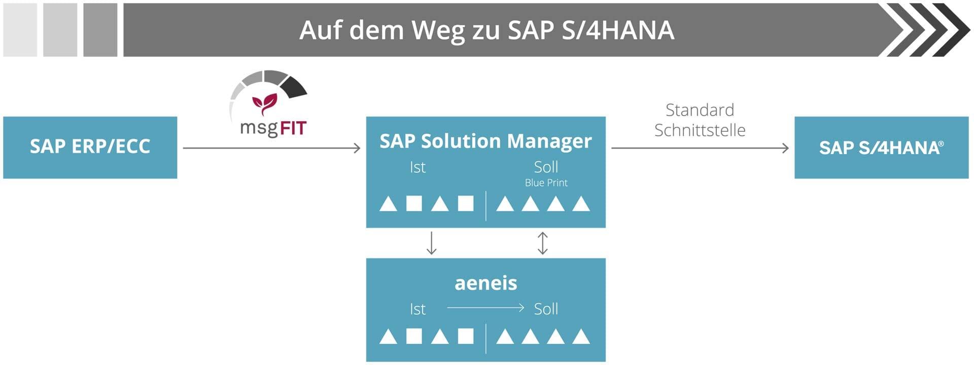 Diagramm: msgFIT SAP S/4HANA