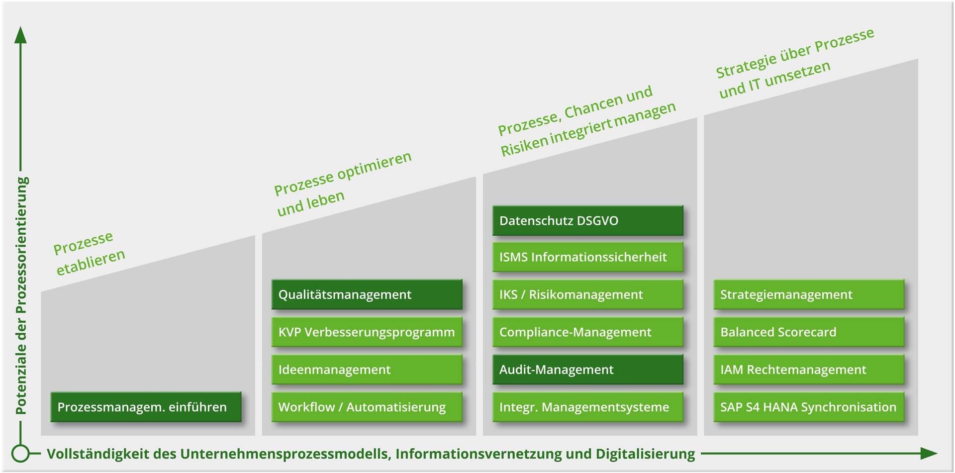 Grafik: Intellior-Beratungsansatz mit erweiterter BPM-Lösung